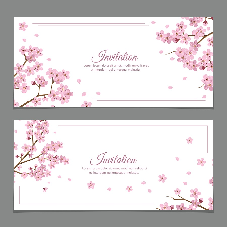 招待状 桜